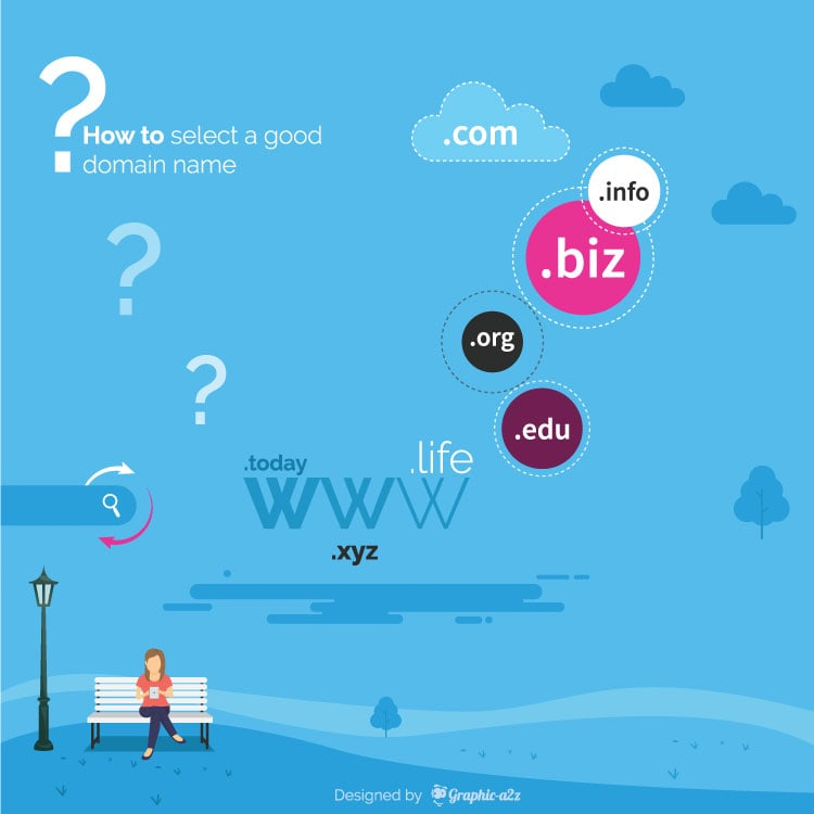 Domain Selection Infographic Template